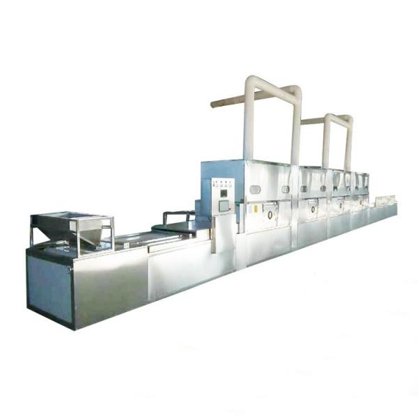 Stainless Steel Microwave Low Temperature Vacuum Drying Oven